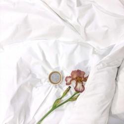 Комплект постільної білизни Вілюта ранфорс Білий полуторний
